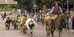 Locksmith Services In Fort Worth Texas - San Antonio Car Key Pros